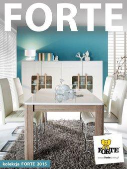 Gazetka promocyjna Forte, ważna od 15.06.2015 do 31.12.2015.