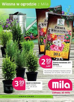 Gazetka promocyjna MILA, ważna od 06.04.2016 do 12.04.2016.