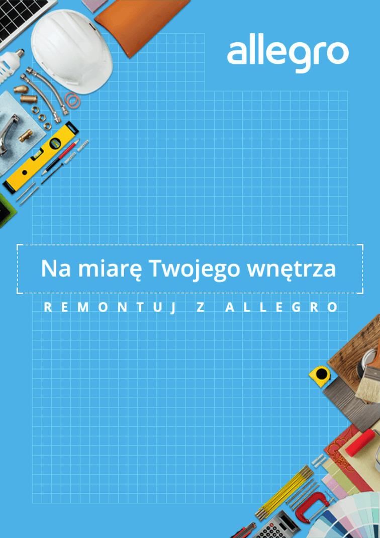 Gazetka sieci Allegro, ważna od 2017-06-28 do 2017-07-31, strona 1